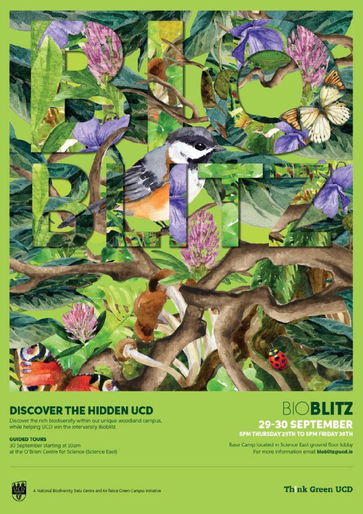 bioblitz-poster