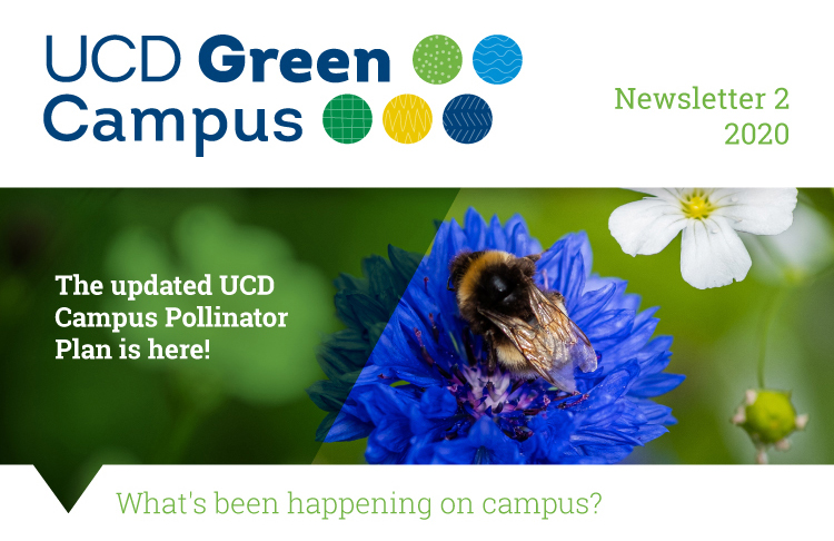 Thumbnail-news-J17097-Green-Campus-Biodiversity-June-Newsletter2_Slices_01
