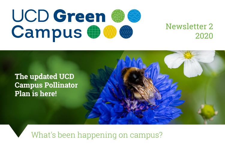 Thumbnail-news-J17097-Green-Campus-Biodiversity-June-Newsletter2_Slices_01